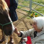 Sensory inspired - Ponies Supporting Dementia