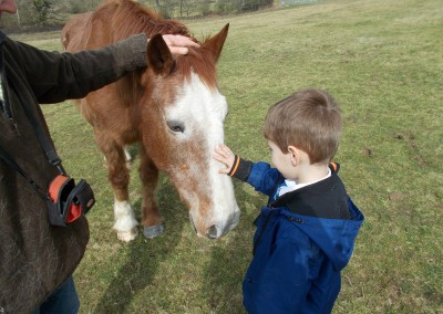 Learner interacting with pony