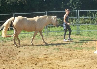 Girl leading pony