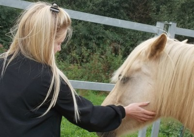 Girl stroking pony