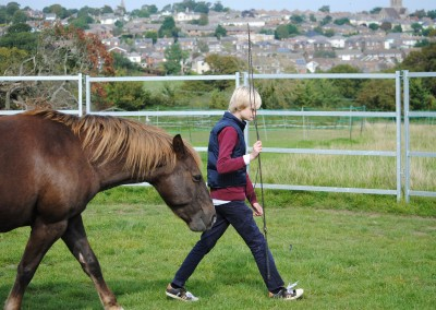 Learner with horse