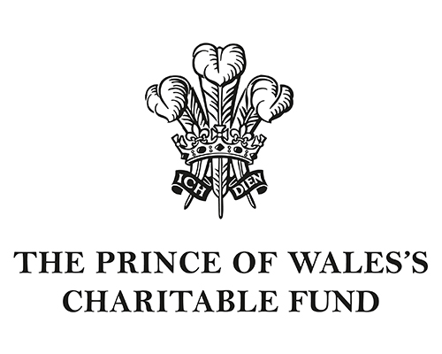 Image result for prince of wales charitable fund logo